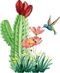 Watercolor cactus, wildflowers and hummingbird